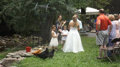 Flower Girl Chicks