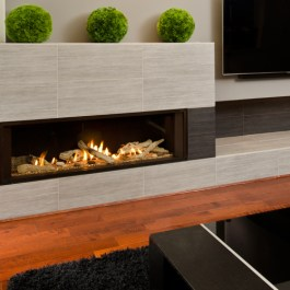 Valor L2 Linear Fireplace