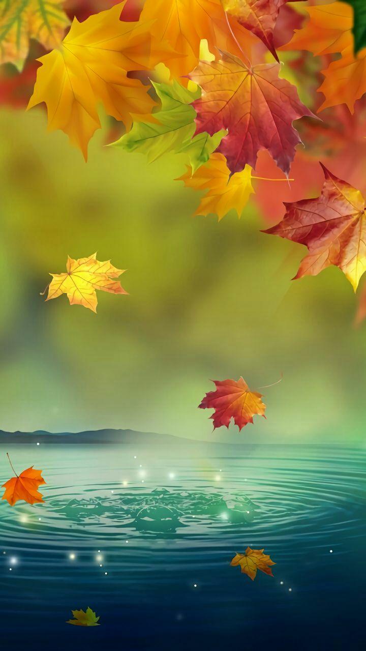 Fall Leaves Iphone 7 Wallpaper خلفيات الشاشة روعة اجمل خلفية للاصدقاء