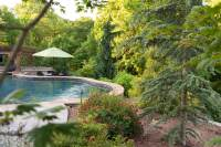 Backyard_Pool_Outdoor_Kitchen_Landscape_Frisella_Nursery ...