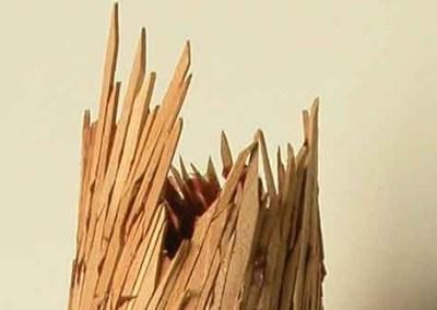 Brown Hive