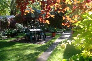 Чем подкормить сад-огород  осенью ?!