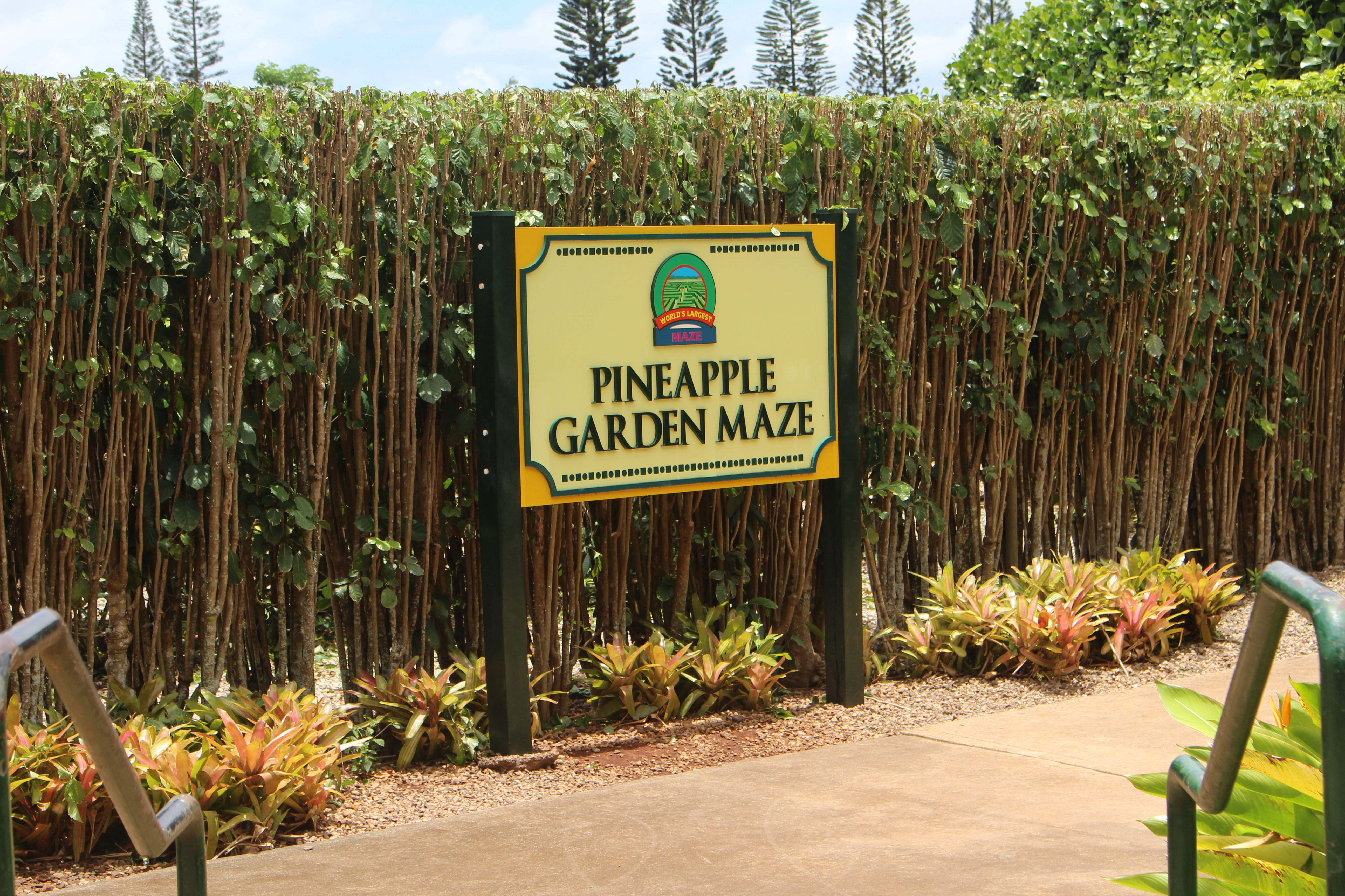 A Guide To Dole Plantation In Wahiawa Hawaii From One Girl To One World