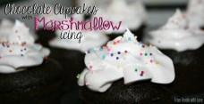 Marshmallow Icing
