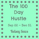 The 100 Day Hustle