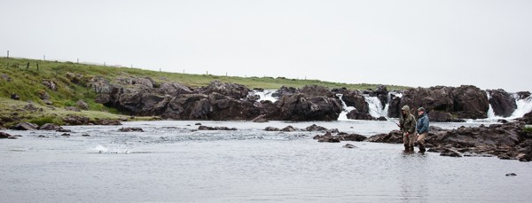 Field Stories: Four Great Rivers in Iceland – Part 2