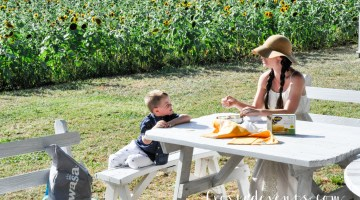 Sunflowers Pack Picnic Snacks Picking Flowers Summer Fun