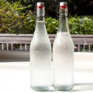 Bottled Tapwater - C. Phaisalakani