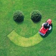 Fun With Lawn