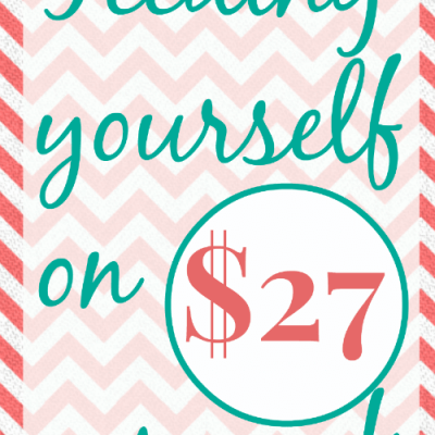 Day 7: $27 Grocery Budget Challenge