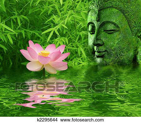 Beauty Girl Hd Wallpaper Download Stock Photo Of Lotus Flower K2295644 Search Stock Images