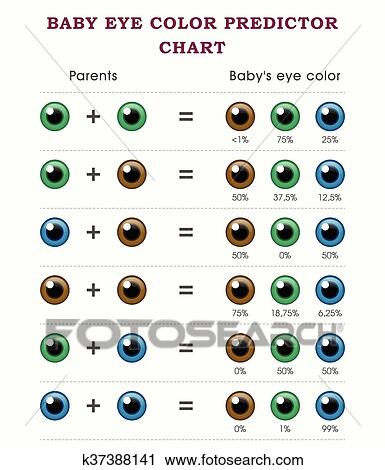 child eye color predictor Anexa Market - eye chart template