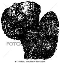 Clip Art - java, uomo, (Homo, erectus) k11033577 - Cerca ...