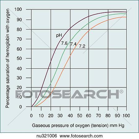 Stock Illustration of Oxyhemoglobin dissociation curve nu321006