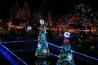 Top 5 Vancouver Christmas Attractions