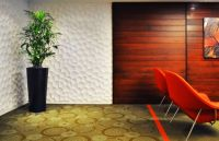 Textured 3D Wall Panel Pictures
