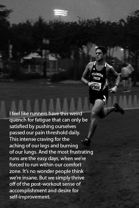 Comfort Zone Motivational Quotes Wallpaper Distance Running Quotes Quotesgram