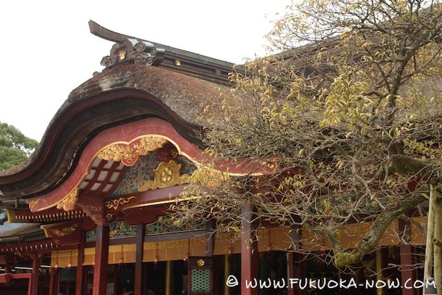 Dazaifu Historical Trail 004