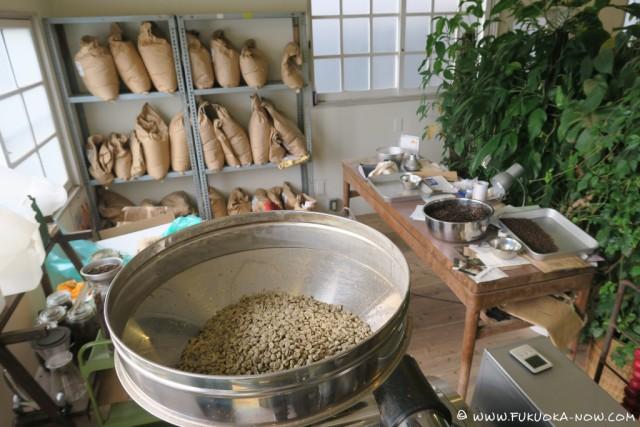 petani coffee nov 2015 002