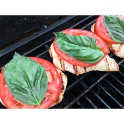 Small Crop Of Grilled Chicken Parmesan