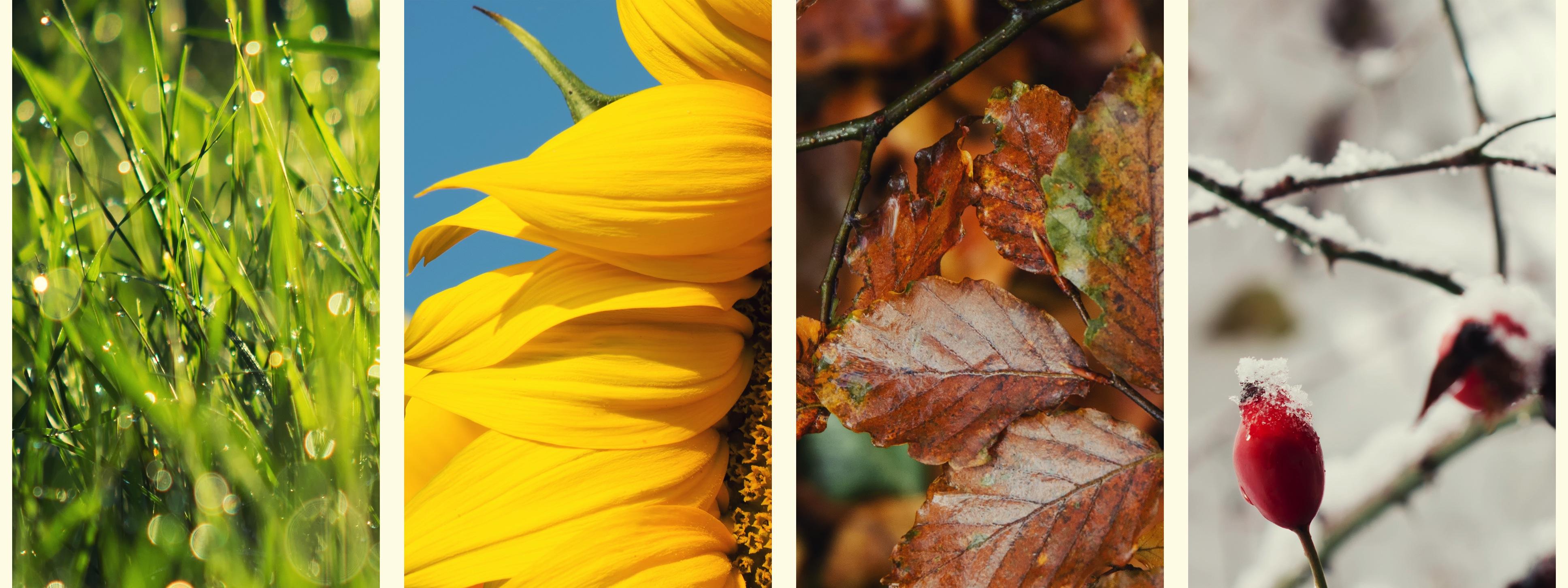 Islamic Wallpaper Hd 3d Seasonal Picture 3872x1452 Full Hd Wall