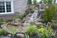 water garden koi pond installation project in Watchung ...