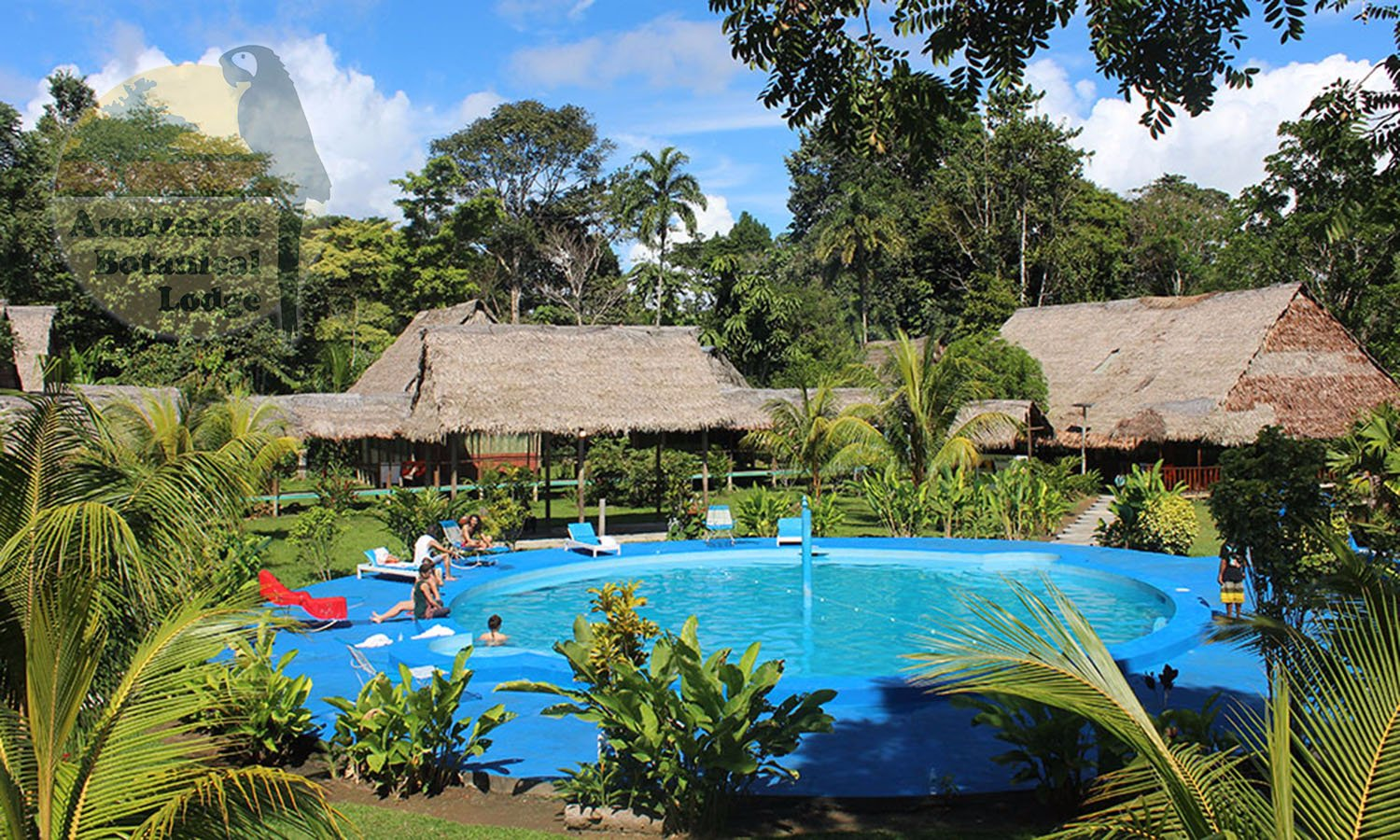 Amazon Piscina Paquete Botanical Lodge En Iquitos Full Viajes Peru