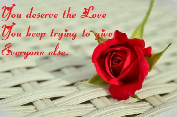 rose-812765_960_720