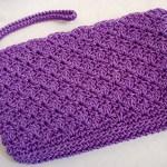 Purple Simply Sweet Clutch w/ strap $15.00
