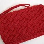 Red Simply Sweet Clutch w/ strap $15.00