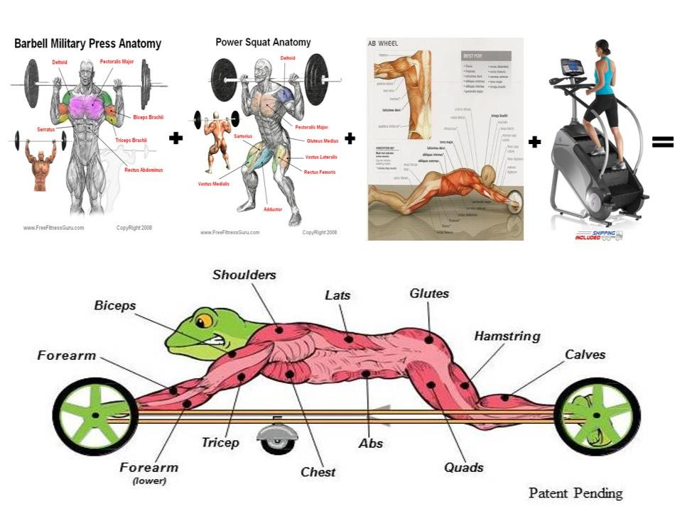 Frog Fitness Fundable - Crowdfunding for Small Businesses