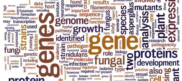 24th Fungal Genetics abstracts