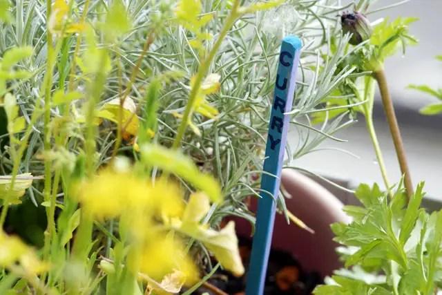 Anleitung Pflanzenmarkierer selber machen