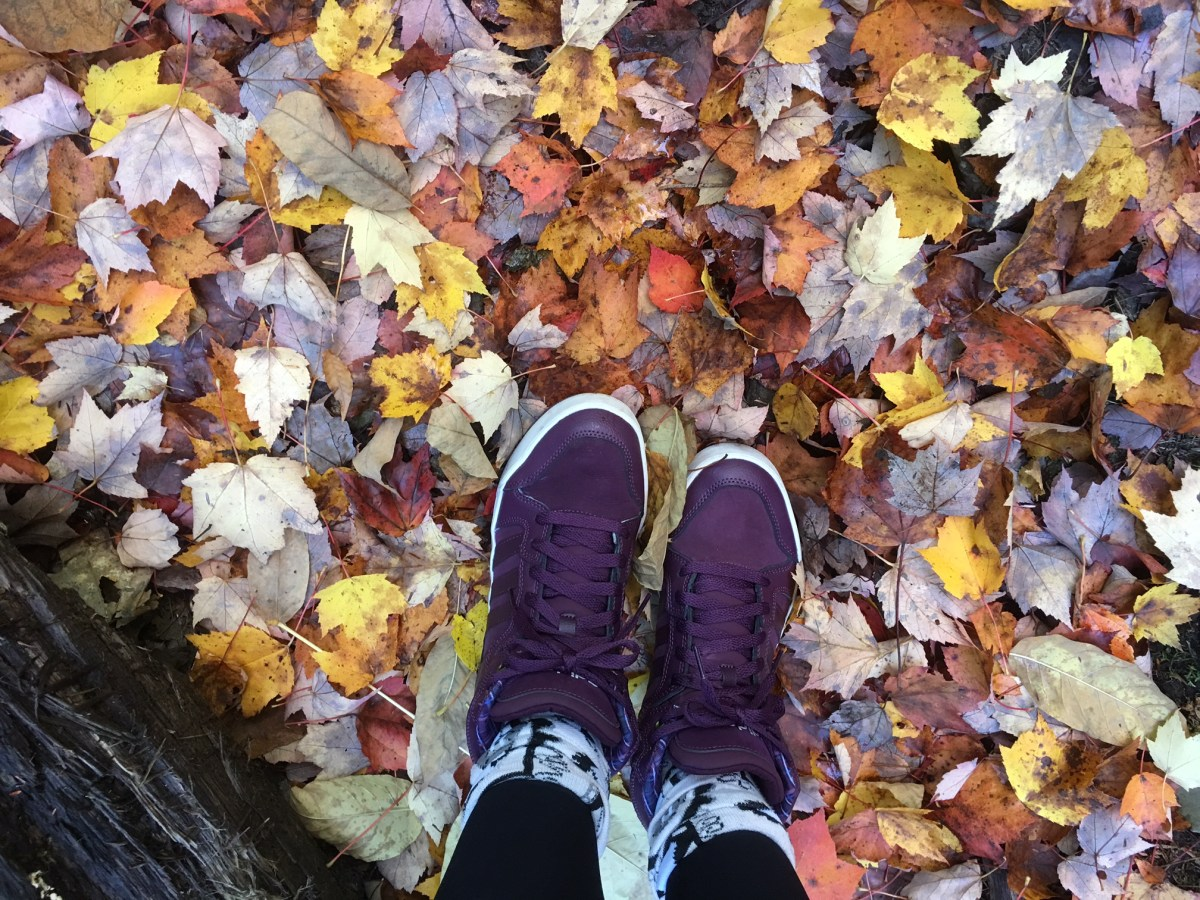 5 things I learned from my first Fall on the East Coast