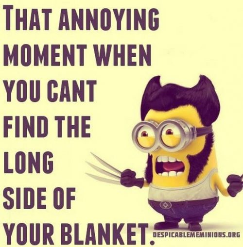 Minion Girl Wallpaper 40 Funny Minions Quotes And Sayings Funny Minions Memes
