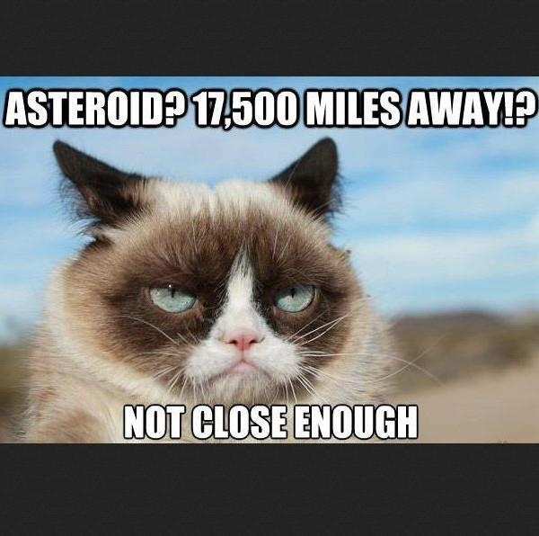 How Did Grumpy Cat Get Famous