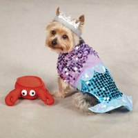 60 Creative Dog Halloween Costumes Ideas