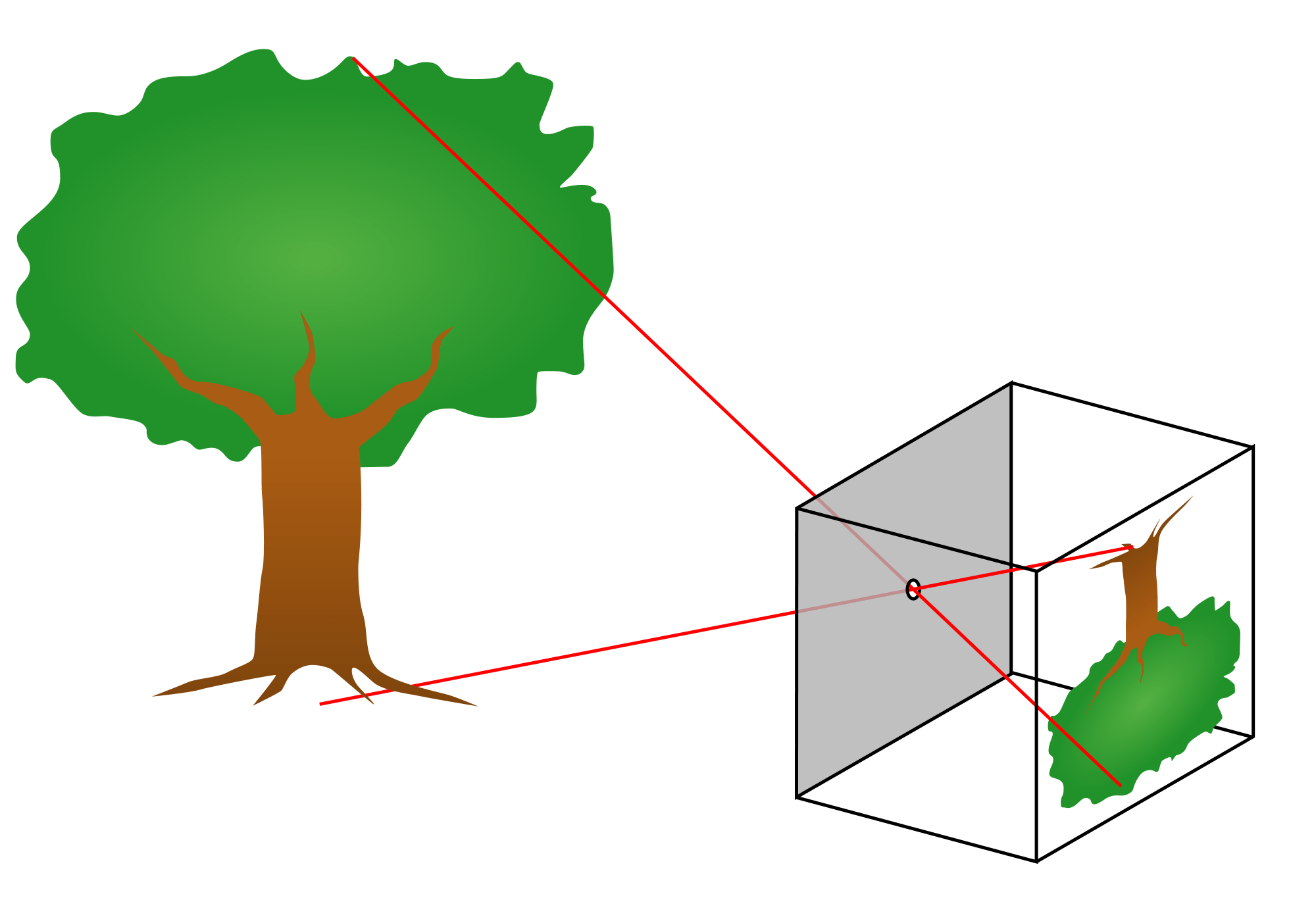 Use Light To Turn Your World Upside Down Funsizephysics