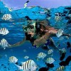 DIVING-Travel Guide-small_3347103996