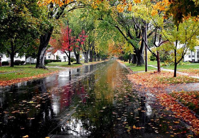 Rainy Fall Day Wallpaper Autumn Rain Chatsworth Illinois Fun Wunderlust