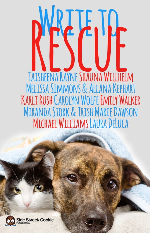 Write to Rescue cover
