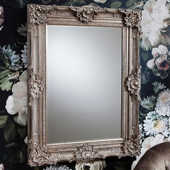 Decorative Mirror Rectangle Valley Baroque Style Wall Mirror Rectangular In Antique