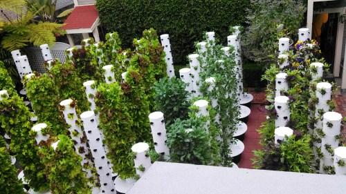 Medium Of Backyard Vertical Garden