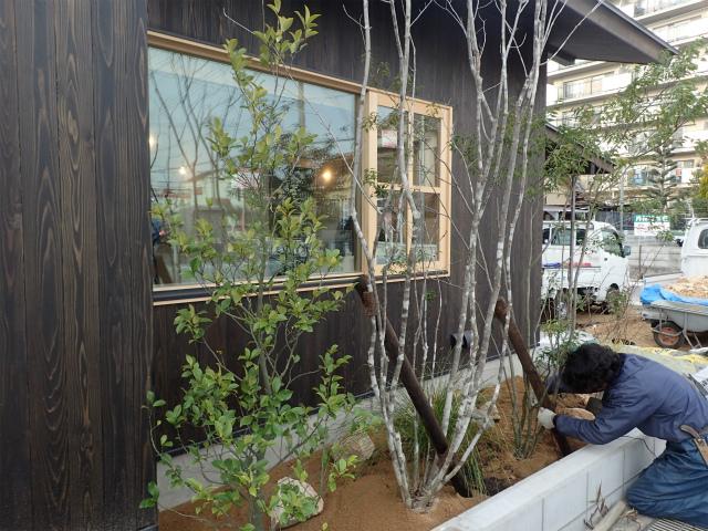 奈良 植栽