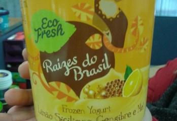 Frozen Yogurt Limão Siciliano, Gengibre e Mel Raízes do Brasil Eco Fresh