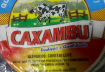 Queijo Minas Frescal Light Caxambu