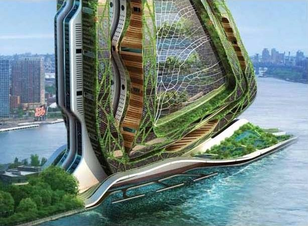 The Vertical Farm Feeding the World in the 21st Century