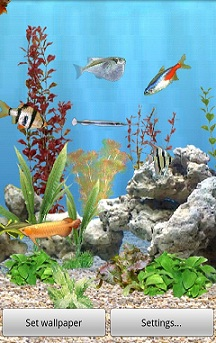 Amazon.com: aniPet Freshwater Aquarium Live Wallpaper: Appstore for Android