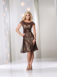 Plus Size A line Knee Length Lace Purple Mother of the ...