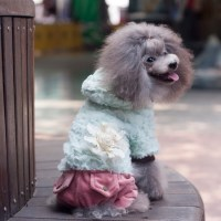 FREE SHIPPIN new arrival small large dog clothes cheap ...
